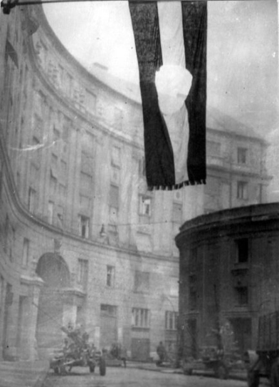 Hungarian flag, with a hole where the communist emblem had been cut out - symbol of the 1956 revolution. Photographer unknown