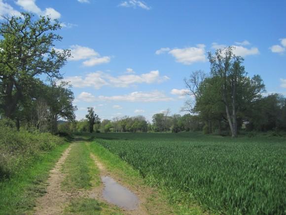 Knowle Park, Cranleigh