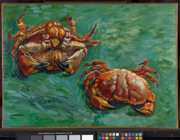 Vincent van Gogh (1853 – 1890) Two Crabs, 1889 Oil on canvas On loan from a Private Collection © Private Collection