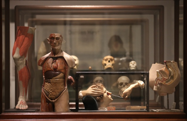 Magnificent Obsessions: The Artist as Collector Vitrine of objects owned by Damien Hirst Barbican Art Gallery - 12 Feb – 25 May 2015 © Peter MacDiarmid / Getty Images Courtesy Murderme Collection