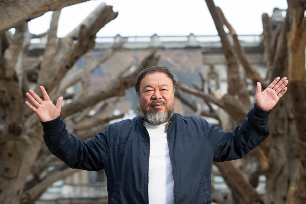 Ai Weiwei presenting his installation Tree in the courtyard at the Royal Academy of Arts (2015) Photo courtesy of Royal Academy of Arts, London. Photography © Dave Parry