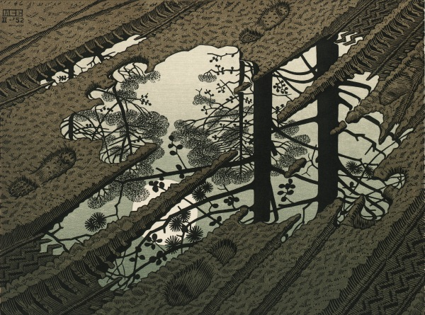 M.C. Escher,Puddle (February 1952) Woodcut Collection Gemeentemuseum Den Haag, The Hague, The Netherlands.