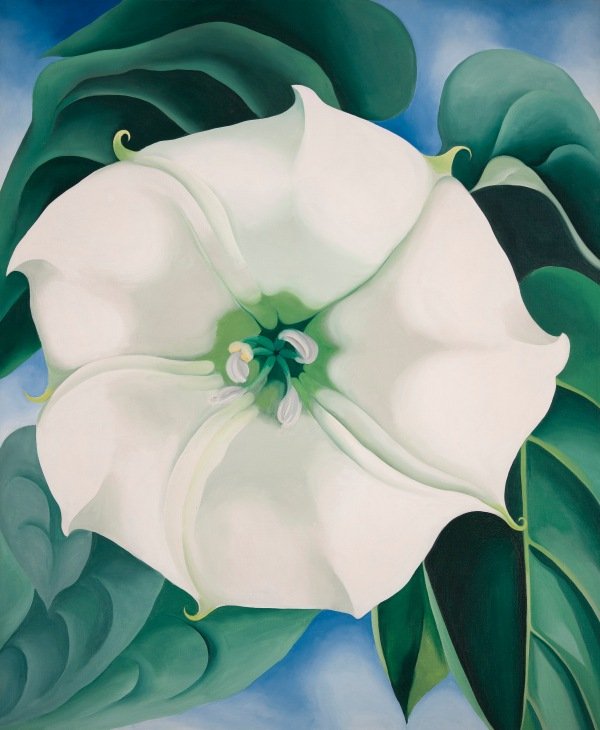 Jimson Weed/White Flower No. 1 by Georgia O'Keeffe (1932) Crystal Bridges Museum of American Art, Arkansas, USA. Photography by Edward C. Robison III © 2016 Georgia O'Keeffe Museum/DACS, London