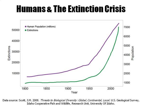 Human population against extinction rates (Source: http://www.biologicaldiversity.org/programs/population_and_sustainability/extinction/extinction)