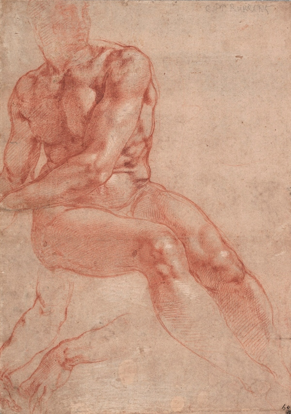 Seated nude and two studies of an arm (1510-1512) by Michelangelo © Albertina, Vienna