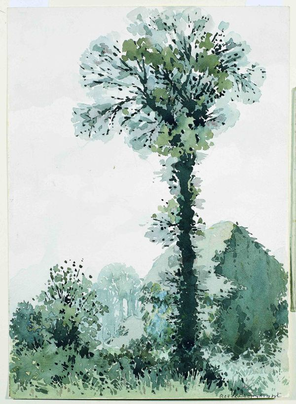Landscape with tall tree and haystack by William Heath Robinson
