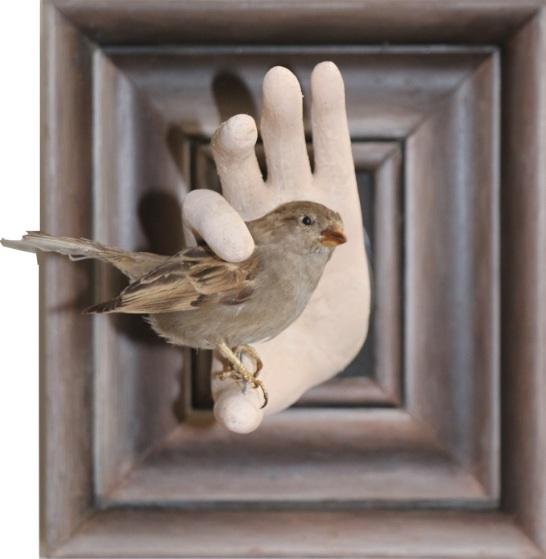 Bird by PJ Crook