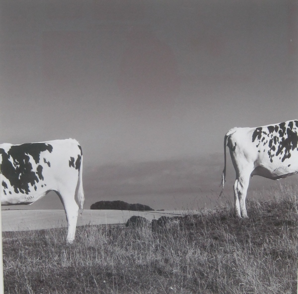 On King's Play Hill, Wiltshire by Richard Draper. Giclée print on archival paper (£480)