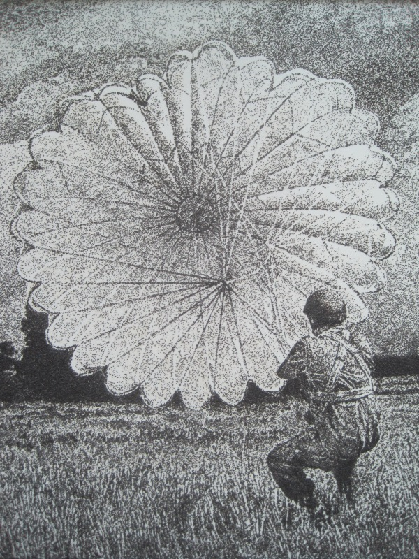 Seeds to the wind by Jon England. poppy seeds and varnish (£2,200)