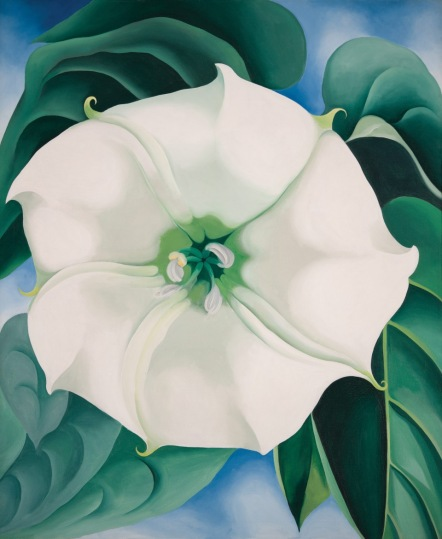 Jimson Weed/White Flower No. 1 (1932) by Georgia O'Keeffe