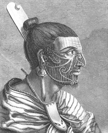 The head of a New Zealander by Sydney Parkinson (1773)
