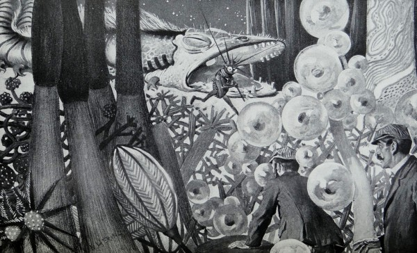 Illustration for The First Men In the Moon by E. Herring (1901)