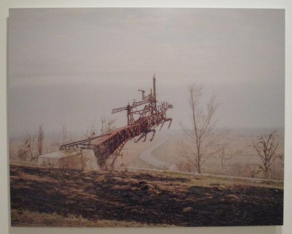 Wild Fields by Michał Sierakowski (Poland)
