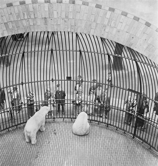 People behind bars, Berlin Zoo, ca. 1930-1935 © Mara Vishniac Kohn