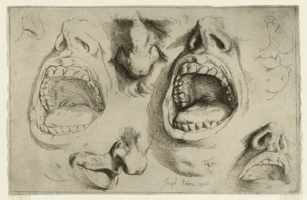 Studies of the nose and mouth by Jusepe de Ribera (1622) © the trustees of the British Museum
