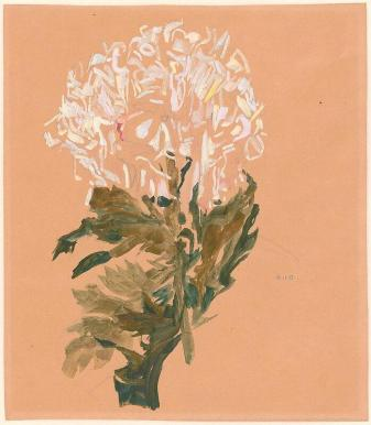 White chrysanthemum by Egon Schiele (1910)