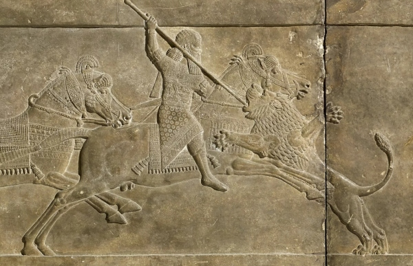 Relief depicting Ashurbanipal hunting a lion (645 – 635 BC) © The Trustees of the British Museum