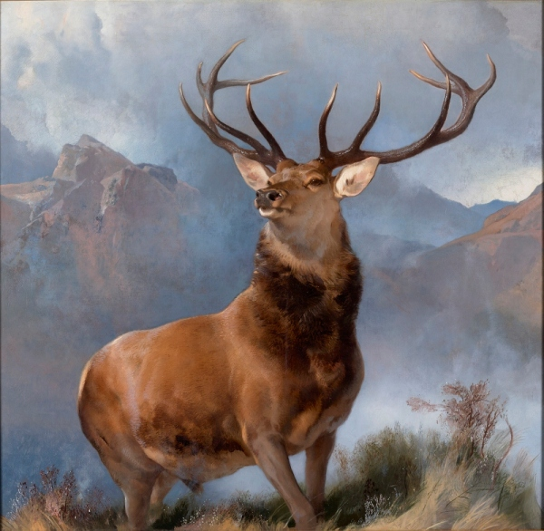 The Monarch of the Glen (1851) by Edwin Landseer © National Galleries of Scotland