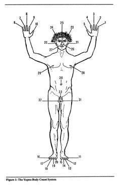 Diagram showing numbers attributed to parts of the body by the Yupno tribe